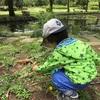 保育園の送り迎えの時間帯は何時が多いのか〜3歳から幼稚園へ、という家庭も意外と多い〜