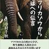 中村千秋という名のアフリカゾウからの伝言 ~その前に思い出して、伝えたいことがあるんです~