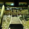 玉置神社と樹齢3000年の神代杉