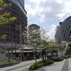 【小学校の休校】延長が決定しました。大阪梅田の人通りはめっきり減【関西エリア】
