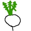 京野菜が美味しい理由、その歴史と背景に迫る。