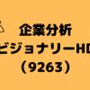 【企業分析】ビジョナリーHD(3995)
