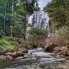クローンラン国立公園を歩く-อุทยานแห่งชาติคลองลาน | Khlong Lan National Park~クローンラン滝、そして撤収!