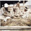 1945年8月26日 『マイナスからの再建』