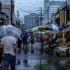 雨の日に写す
