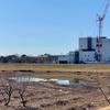 蛇島調節池(埼玉県富士見)