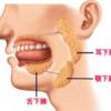 じじぃの「唾液と唾液腺・唾が出ないのは免疫異常!その原因、Xにあり」