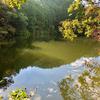 野尻林道の新池(和歌山県海南)