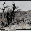 1945年5月29日 『首里城に侵入した海兵隊』