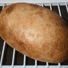 パスコの超熟に使われている「ゆめちから」で作る湯種コッペパン