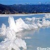 見られるのは運次第❓湖が凍り芸術に