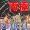 【観戦記】大日本プロレス両国大会、11・11両極譚へ行ってきた!
