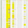 新型コロナウイルス、都道府県別、週間対比・感染被害一覧表 (8月13日現在)