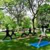 Yoga in the park 2018 on Canada day/トロントでパークヨガ