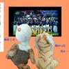【日本シリーズ終了】プロ野球マメ知識2【福岡ソフトバンクホークスおめでとう】