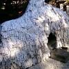 【京都 安井金比羅宮】クリスマスに縁切り神社参拝。切りたい悪縁と、結びたい良縁について