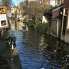 オランダの田舎町を巡る旅~ライデン、デルフト、ロッテルダム、ティルバーグ~【春の欧州旅行13日目】