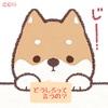 とまどう犬知事(けんちじ)たち Part 2 〜🐶イヌ君達 の つぶやき😺