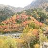 標高1,800mの日光金精峠の紅葉が見ごろ