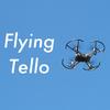 トイドローンTello(テロー)は屋外で飛ばせるのか実際に試してみた結果・・・【アウトドアでホビードローン】