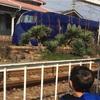 南海電車浜寺公園駅下車すぐ。「ラピート号」が近くて電車大好き息子もびっくり!