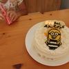 4歳娘の誕生日プレゼントは「ウーニーズ」と「ひらがなかけたよ!」にしました♩