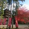 ひめの誕生日は京都でお祝い