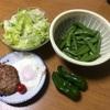 今日の晩ご飯 採れたて野菜