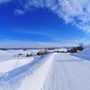 晴れ間の雪しごと