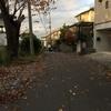 我が家まで木の葉寄せ来る風の道