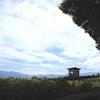 小屋の旅 022(歌舞伎する小屋)
