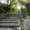 石仏が並ぶ葬送の地 化野念仏寺