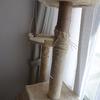 キャットタワーの爪とぎ柱を自分で修理