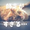 師走がすぎる(株も仕事も生活も!)