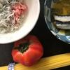 ネギトロとしらすのトマトパスタ