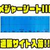【ウォーターランド】120cmオーバーまで計測可能「メジャーシートIII」通販サイト入荷!