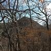 日光・鳴虫山ハイキング