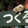 犬看板集合! 番外29