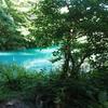 2020年6月 福島【2/2】輝く沼を見に行く!五色沼探勝路コースの雰囲気と周辺スポットの記録
