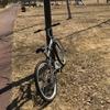 早春の柳町公園を自転車で散策。