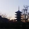 京都で観楓会 Day3:東寺朝散歩とおしゃれ角打ちの最終日