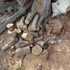 屑と細い木 割りたくなる木 Scrap and thin wood