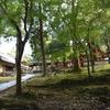 東大寺/手向山八幡宮 大仏さまの鎮守社。渡来した仏と日本の神が蝉時雨のなかで手をたずさえています。
