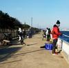 岡崎大樹寺店発 釣場調査 碧南海釣り公園