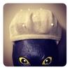 #ブロガーのベレー帽が見たい