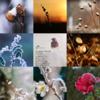 アメブロ、Instagram、Facebookに「ケイティー」さんの詩をご紹介しました。