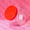 ダイソーで見つけた猫瓶っぽいガラスポット [ Daiso ]