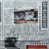東愛知新聞の猫の記事いくつか
