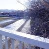 京都 鴨川沿いウォーキング 下流に向かって・・・