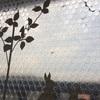 窓に貼る断熱用の気泡緩衝材にご注意を!~劣化すると窓からはがれにくくなります。はがし方解説つき。
